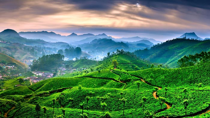 Kerala Tour Packages  Nights  Days From Chennai