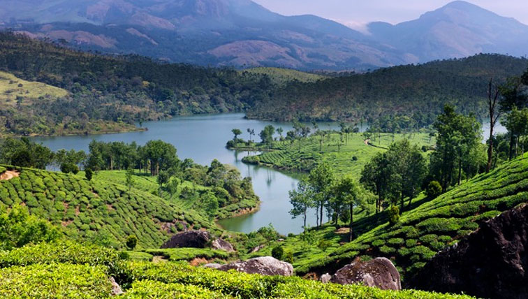 3 day munnar honeymoon tour packages