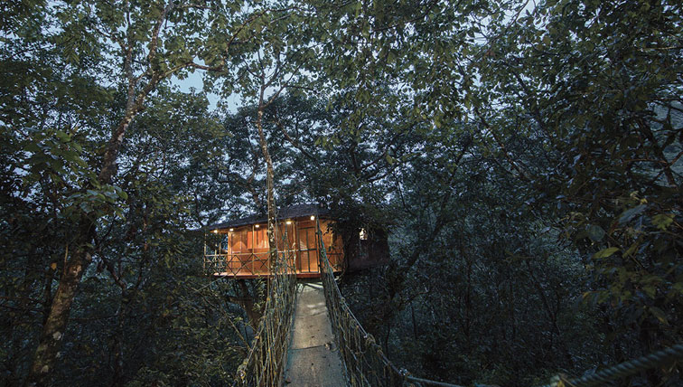 treehouse honeymoon packages for 3 days in wayanad