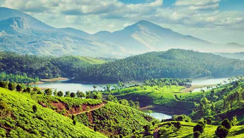 munnar-family-packages-tours