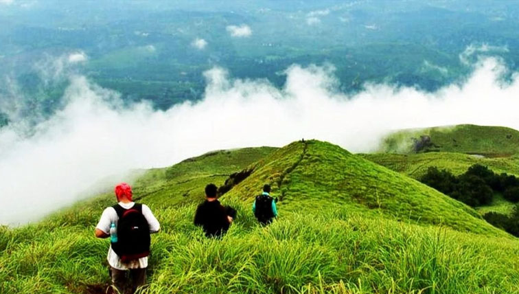 Wayanad Tour Packages From Kochi