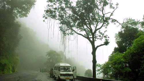 wayanad family tour package