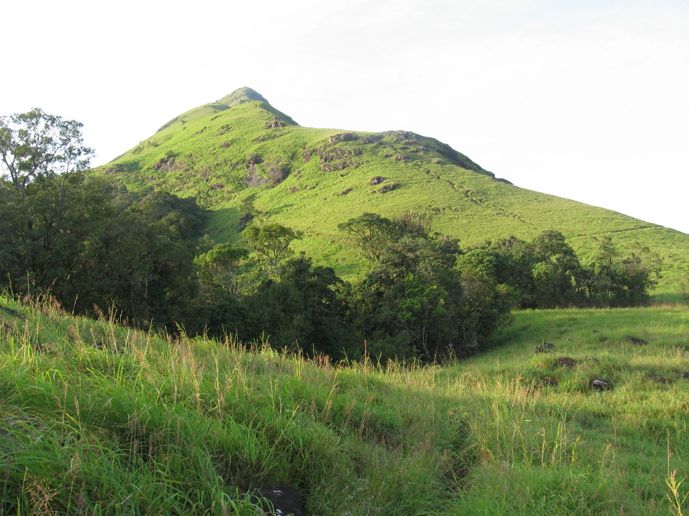 Chembra Peak Waynad