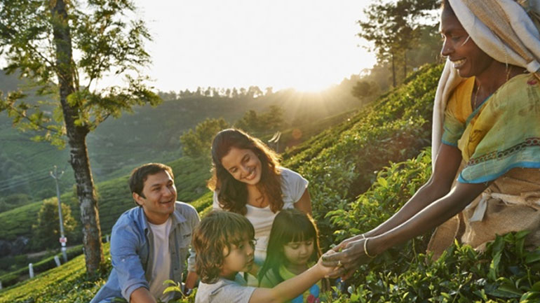munnar family tour package