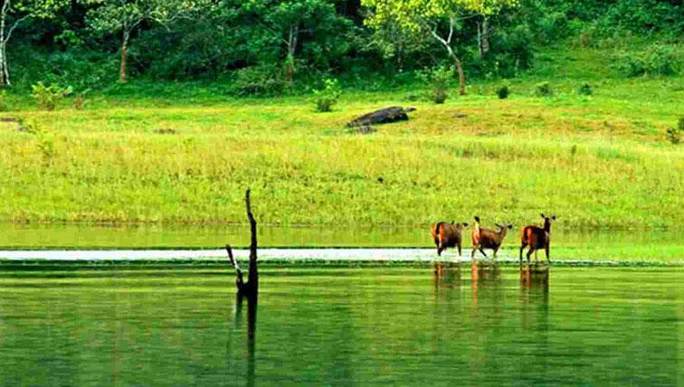 Kerala Tour Packages B2B - Leading B2B Tour Operators in Kerala