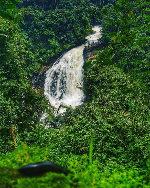 valara waterfalls munnar kerala fixed departure tour package